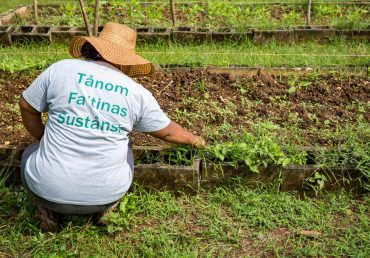 Who is Farm to Table and How Can We Help You?