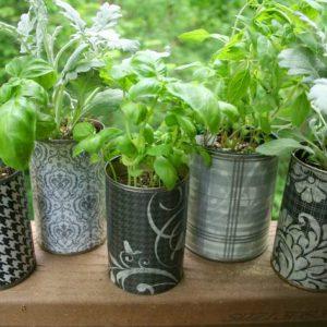 Mini-Container-Garden