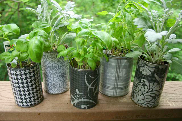 Crop Talk: Basic Container Gardening