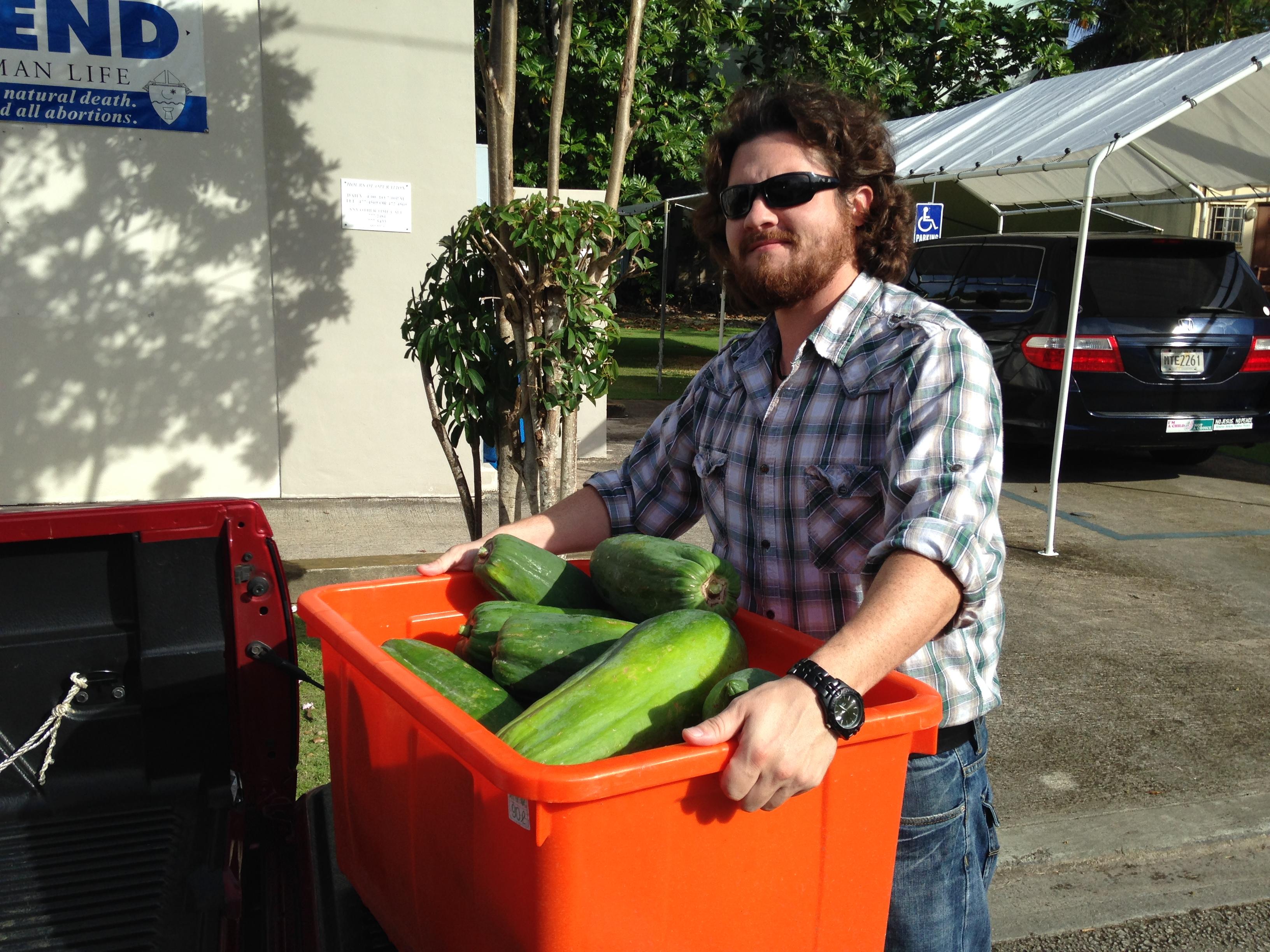 papaya donation