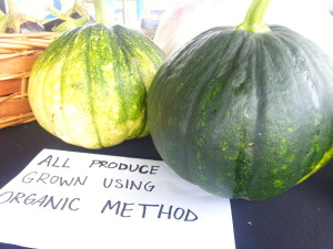 pumpkins grown using organic method