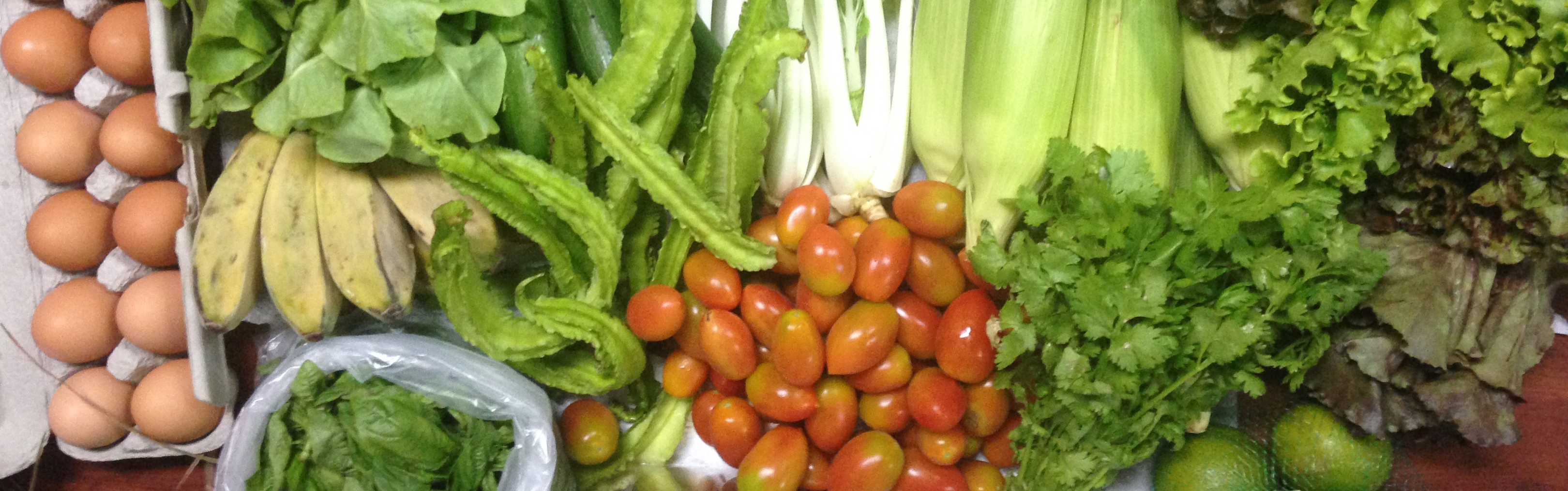 CSA Produce