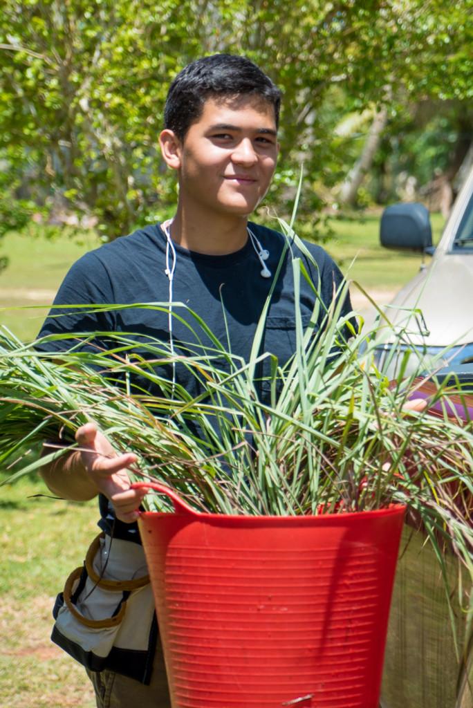 FTT-Kenny-grass-herbs-V
