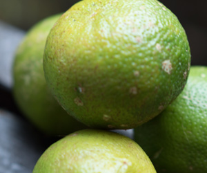 limes-300px