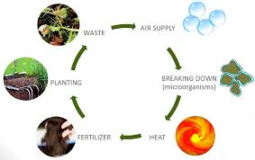 composting diagram