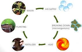 composting diagram